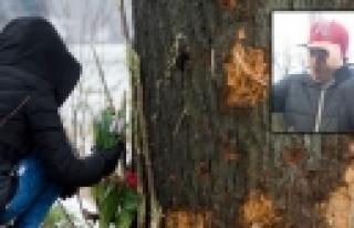 Almanya: ''Ehliyetsiz Genç Kaza Kurbanı''