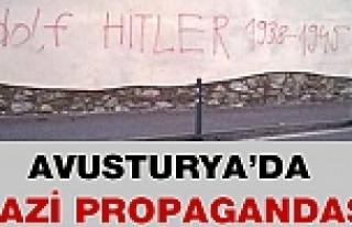 Avusturya'da Nazi Propagandası
