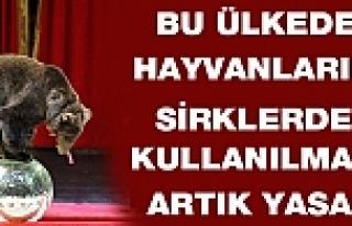 Bu ülkede hayvanların sirklerde kullanılması yasaklandı