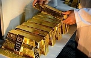 İsviçre'de 'altın' referandumu