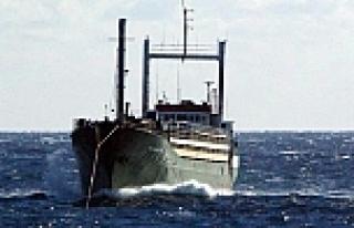 İtalya açıklarında kaptansız gemi alarmı