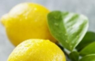 """""""Limon asidi hücreleri gençleştiriyor!"""""""