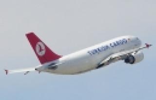 """""""Turkish Airlines meldet Gewinn!"""""""
