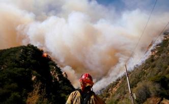 California'daki yangında bilanço korkunç!