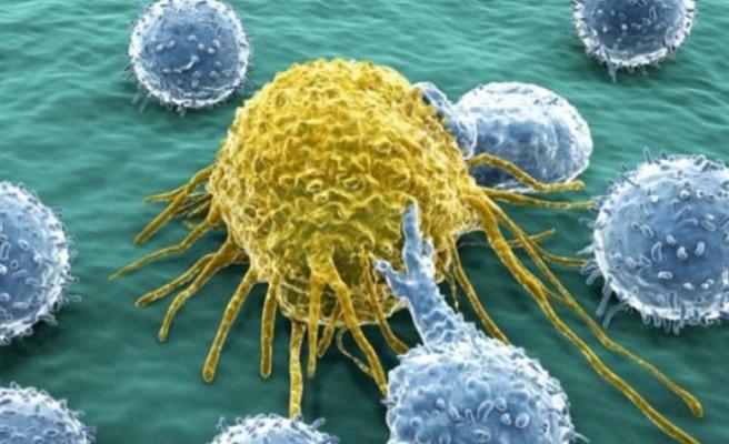 Yılda 174 bin kişi kansere yakalanıyor