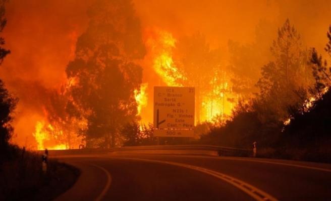Orman yangını 57 can aldı