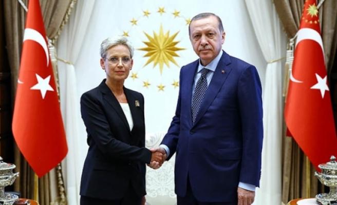 Avusturya'nın Ankara Büyükelçisi, Erdoğan'a güven mektubunu sundu