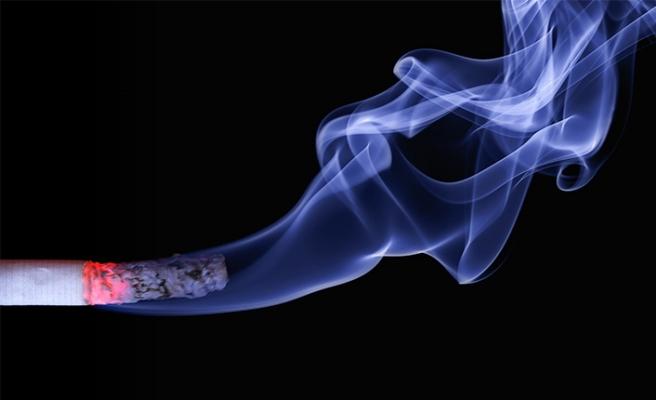 Viyana | Sigara hayatına mal oldu