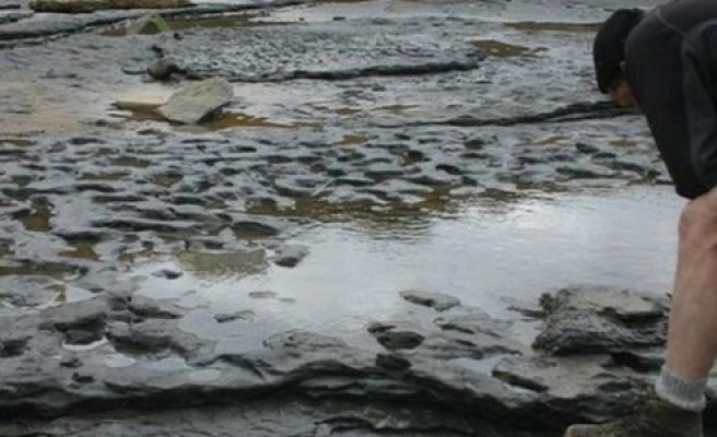 ''800 bin yıllık ayak izleri bulundu''