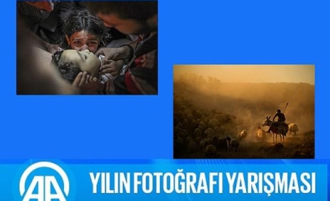AA'nın 'Yılın Fotoğrafı' oylaması sonuçlandı: İşte Yılın Fotoğrafı