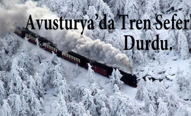 ''Avusturya'da tren seferleri durdu''