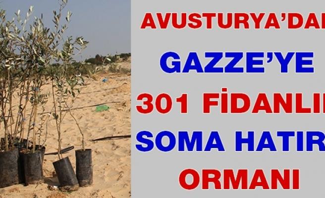 Avusturya'dan Gazze'ye 301 Fidanlık Soma Hatıra Ormanı