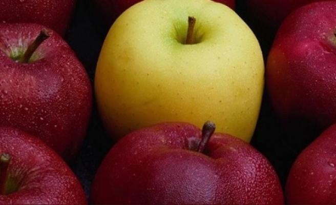 Canan Karatay: Kurtlu elma yiyin