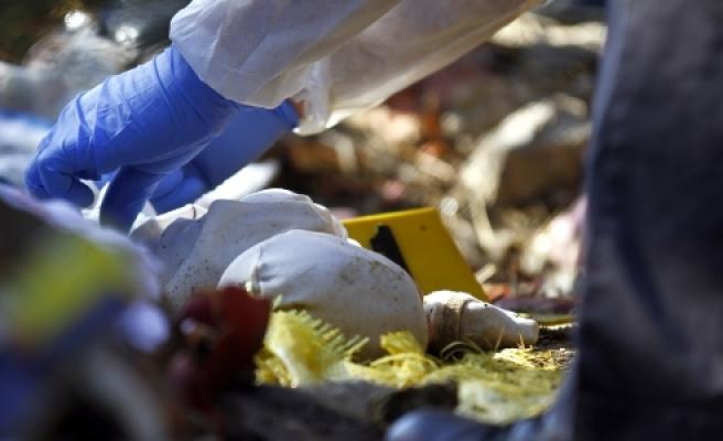 ''Ormanlık alanda 1 haftalık bebek cesedi bulundu''