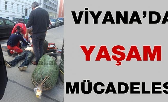 Viyana'da Hayata Tutunma Mücadelesi