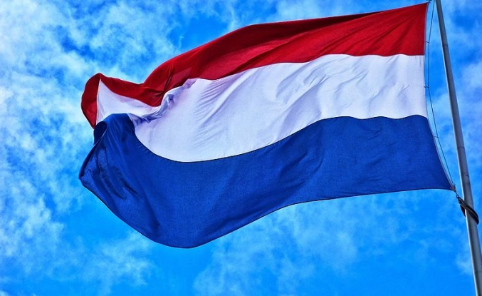 Hollanda yargısı camilere yönelik şiddeti 'ayrımcılık ya da ırkçılık olarak görmüyor'