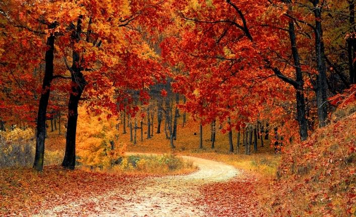 Mevsim geçişi ruhunu nasıl etkiliyor?