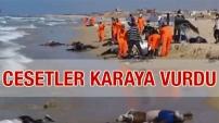 Cesetler sahile vurdu