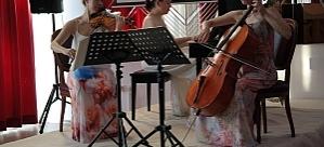 Avusturya Günleri, Ludus Ensemble Konseriyle Başladı